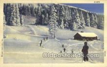spo025610 - Skiing Postcard Post Card Old Vintage Antique