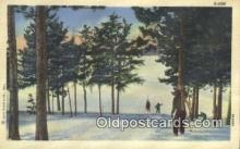 spo025628 - Skiing Postcard Post Card Old Vintage Antique