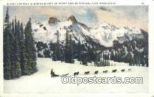 spo025814 - Mount rainier National Park, WA USA Ski, Skiing Postcard Post Card Old Vintage Antique