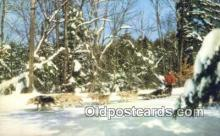 spo025819 - Lake Placid, NY USA Ski, Skiing Postcard Post Card Old Vintage Antique