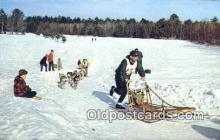 spo025821 - Sled Dog Racing In New England, USA Ski, Skiing Postcard Post Card Old Vintage Antique