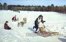 spo025822 - Sled Dog Racing In New England, USA Ski, Skiing Postcard Post Card Old Vintage Antique