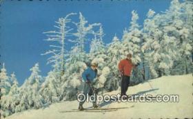spo025904 - Repos Au Sommet  Postcard Post Card, Carte Postale, Cartolina Postale, Tarjets Postal,  Old Vintage Antique