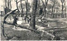 spo028007 - Ile D'oleron, Miniature Golf Sports Postcard Postcards
