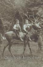 spo033110 - Hunting Postcard Postcards