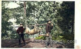 spo033163 - Hunting in Adirondacks, Postcard Postcards