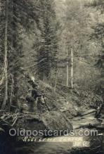spo033167 - Hunting Postcard Postcards