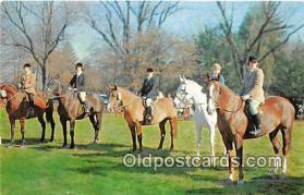 spo033301 - Hunting Postcard