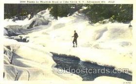 spo041002 - Lake Placid, New York, USA Adirondack. Mts. Ski, Skiing Postcard Postcards