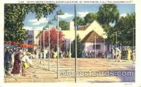 spo041014 - St. Petersburg, Florida Mirror Lake Park, Shuffle Board, Shuffleboard, Postcard Postcards