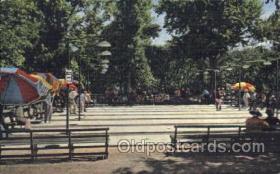 spo041022 - Shuffleboard in Acacia Park Shuffle Board, Shuffleboard Postcard Postcards