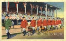 spo046045 - Greyhounds, FL USA Dog Racing, Old Vintage Antique Postcard Post Card