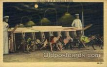 spo046051 - St Petersburg Kennel Club, St Petersburg, FL USA Dog Racing, Old Vintage Antique Postcard Post Card
