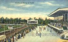 spo046061 - Greyhounds, FL USA Dog Racing, Old Vintage Antique Postcard Post Card
