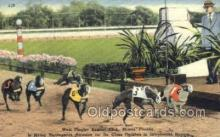spo046063 - West Flagger Kennel Club, Miami Beach, FL USA Dog Racing, Old Vintage Antique Postcard Post Card