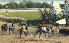 spo046065 - West Flagger Kennel Club, Miami Beach, FL USA Dog Racing, Old Vintage Antique Postcard Post Card