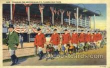 spo046068 - Greyhounds, FL USA Dog Racing, Old Vintage Antique Postcard Post Card