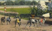 spo046095 - West Flagger Kennel Club, Miami Beach, FL USA Dog Racing, Old Vintage Antique Postcard Post Card