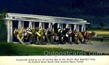 spo046104 - Daytona Beach Kennel Club, Daytona Beach, FL USA Dog Racing, Old Vintage Antique Postcard Post Card