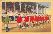 Parading The Greyhounds, Dog Track