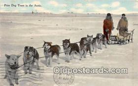 Prize Dog Team