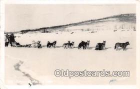 Famous Alaska Dog Team