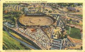 spo050053 - Mainliner, Pendleton, Oregon, USA Misc. Sports Postcard Postcards