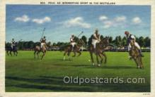 spo060010 - An Interesting sport in the southland  Polo, Sports, Old Vintage Antique Postcard Post Cards