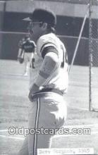 spo070062 - Dave Bergman Baseball Postcard Detroit Tigers Base Ball Postcard Post Card