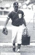 spo070103 - Billy Consolo Baseball Postcard Detroit Tigers Base Ball Postcard Post Card