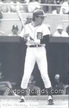 spo070122 - Pedro Chaves Baseball Postcard Detroit Tigers Base Ball Postcard Post Card