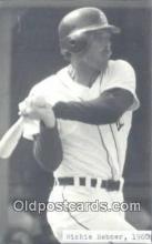 spo070277 - Richie Hebner Baseball Non Postcard Detroit Tigers Base Ball Postcard Post Card