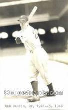 spo070278 - Ned Harris Base Ball Postcard Detroit Tigers Baseball Postcard Post Card