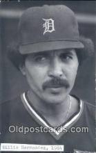spo070291 - Willie Hernandez Base Ball Postcard Detroit Tigers Baseball Postcard Post Card