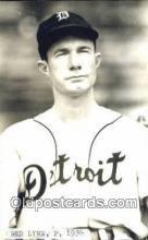 spo070441 - Red Lynn Base Ball Postcard Detroit Tigers Baseball Postcard Post Card