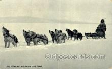 spo100008 - Dog Sledding, Old Vintage Antique Post Card Post Cards