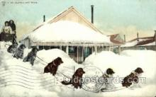 spo100009 - AK USA Dog Sledding, Old Vintage Antique Post Card Post Cards