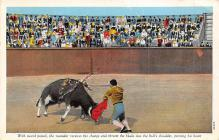 spof017107 - Mexican Bullfighting Postcard