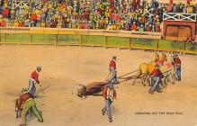 spof017147 - Dragging out the Dead Bull  Tarjeta Postal, Bullfighting Postcard
