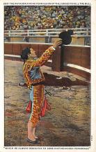 spof017182 - The Matador, Bull Fighting Postcard