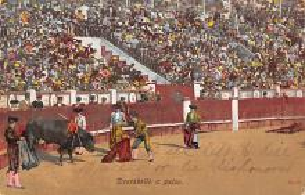 spof017195 - Descabello a Pulso Tarjeta Postal, Bullfighting Postcard
