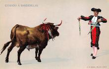 spof017207 - Bullfighting Postcard