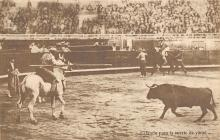 spof017215 - Bullfighting Postcard