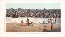spof017216 - Bullfighting Postcard