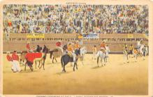 spof017234 - Opening Ceremony at Bull Fight Bull Fighing, Bullfighting Postcard