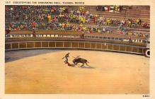 spof017265 - Tijuana, Mexico Bull Fighting, Bullfighting Postcard