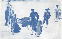spof017282 - Bullfighting Tarjeta Postal Bullfighting Postcard