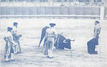 spof017287 - Bullfighting Tarjeta Postal Bullfighting Postcard