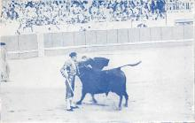 spof017288 - Bullfighting Tarjeta Postal Bullfighting Postcard