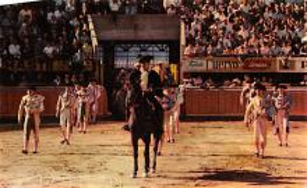 spof017373 - Partiendo Plaza Tarjeta Postal Bullfighting